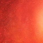 Rhubarbe (rheum officinale)