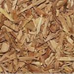 Huile essentielle de bois de santal (Santalum album)