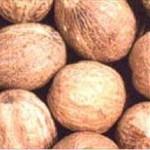 Huile essentielle de noix de muscade (myristica fragrans)