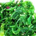 S'alimenter avec des algues ?