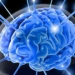 Ginseng et capacité mentale