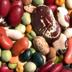 Les différents types de régimes végétariens ou sans viande