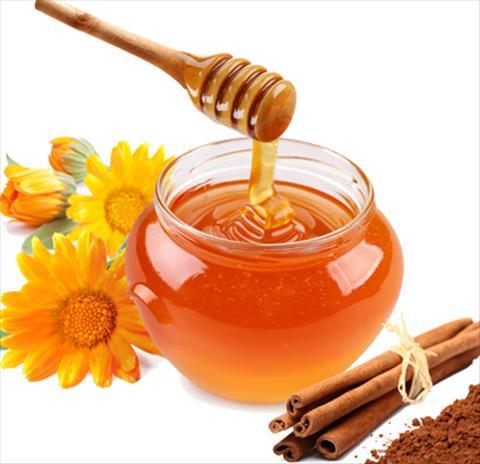 miel et cannelle lixir de jouvence bienfaits