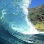 Le magnésium marin