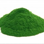 Spiruline bio