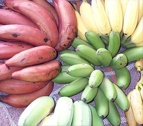 Banane calories 89 pour 100 g