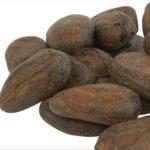 Fève de cacao pour maigrir