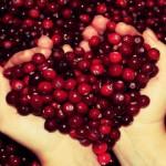 Jus de Cranberry composition