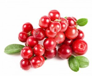 Cranberry dosage & posologie