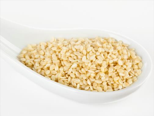 Le sésame (Sesamum indicum)