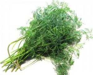 cancer 5 233pices amp 5 herbes valid233es par la science