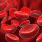 Circulation sanguine & Huile essentielle de lavande