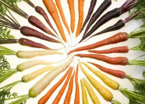 Huile essentielle de carotte origines