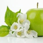 Pomme Verte : fruit SAIN et SALUTAIRE