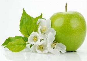 Pomme Verte biologique