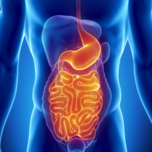 Troubles digestifs