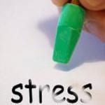Mûres blanches contre le stress