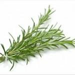 5 remèdes moyenâgeux d'une efficacité redoutable