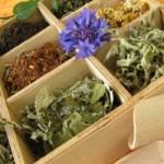 Analgésiques naturels : propriétés et avantages ?