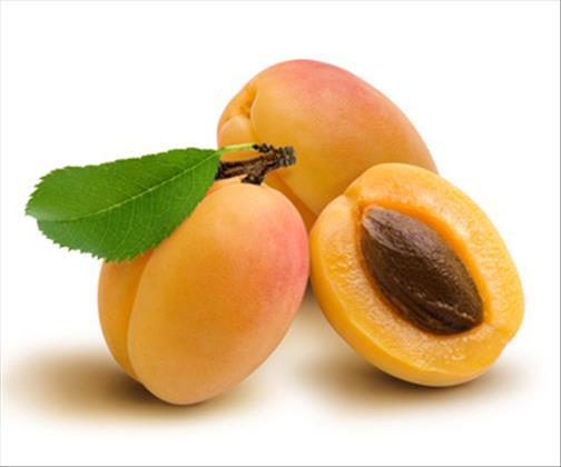 abricot bienfaits propri t s posologie effets secondaires