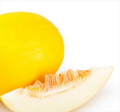 Avis Melon