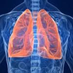Purifier et tonifier ses poumons avec les plantes