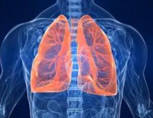 Purifier et tonifier ses poumons
