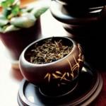 Meilleures herbes officinales pour stimuler votre système immunitaire