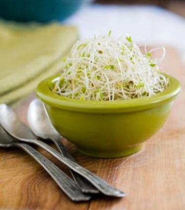 Manger des graines & pousses germées!