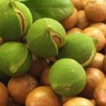 Huile de macadamia dans la cuisine