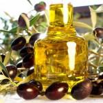 Olivier, feuilles et huile