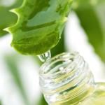 3 plantes pour une peau resplandissante