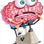Cerveau au ralenti : 5 ALIMENTS EFFICACES