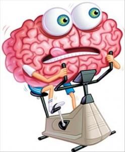 Cerveau au ralenti