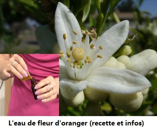 Comment faire de l'eau de fleurs d'oranger ?