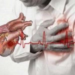 Santé cardiovasculaire