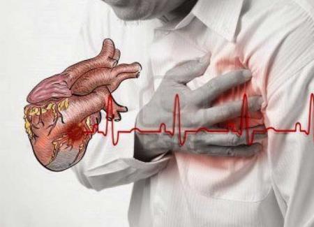 Huile de palme et maladies cardivasculaires