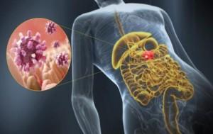 Gastro-entérite symptômes