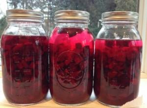 Kvass de betteraves rouges