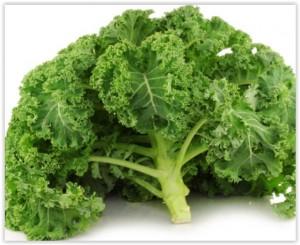 Chou Kale, Un Légume Superstar