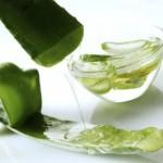 Aloe vera : les bienfaits santé pour les cheveux