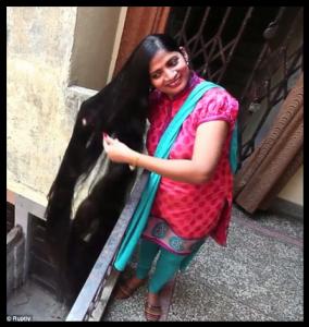 Secret des indiennes pour de beaux cheveux