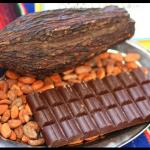 Cacao ou chocolat