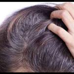 Herbe d'orge contre les cheveux gris