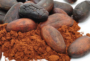 Poudre de cacao pure, biologique et crue.