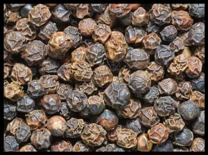 Bienfaits du poivre noir