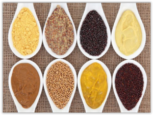 Moutarde en poudre, en farine, huile et sans gluten