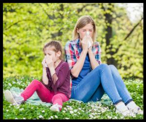 Réactions allergiques, pollen, histamine