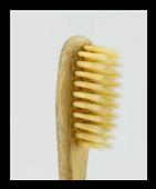 Cannelle de Ceylan et Hygiène dentaire