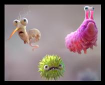 Cannelle de Ceylan vs Microbes